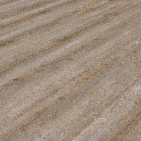 Muster zu Artikel #295558 Vinylboden Fünen 412 Pinie grau-braun SPC-Träger